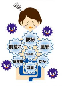 腸内環境が悪いと便秘、肌荒れ、風邪、アレルギー、がんなどになりやすい